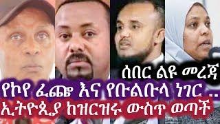 Ethiopia: ሰበር ልዩ መረጃ | የኮየ ፈጬ እና የቡልቡላ ነገር .. | Eskinder Nega | Desalegn Chane