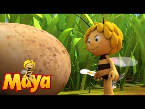 Follow That Egg  - Maya the Bee - Episode 56