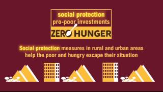 Achieving Zero Hunger: Combining social protection with pro-poor investments