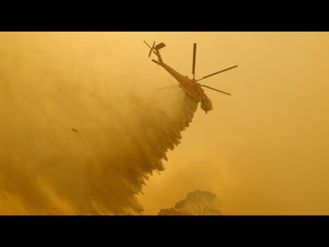 Kampf gegen Buschbrände nahe Australiens Hauptstadt C ...