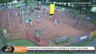 Burza w Aleksandrowie Łódzkim. Ludzie uciekali z parku przed walącymi się drzewami