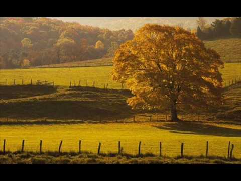 Gustav Mahler : Symphony No. 5 in C Sharp Minor