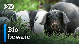 Video Organic food - hype or hope?   DW Documentary MP3, 3GP, MP4, WEBM, AVI, FLV Juli 2018