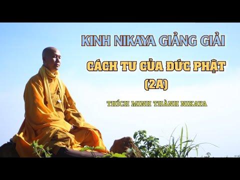 Kinh NIKAYA Giảng Giải - Thiền Quán Cách Tu Của Đức Phật 2A