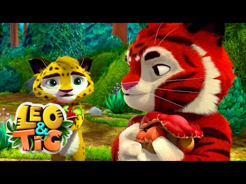 LEO and TIG 🦁 NEW 🐯 Episode 20 - Playing Battleship ❤️ Moolt Kids Toons Happy Bear