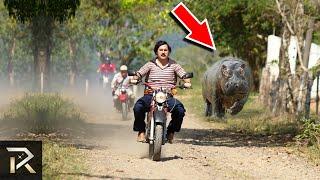 This Is How Pablo Escobar Spent His Billions