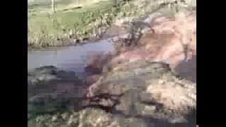 Ollerton United Kingdom  city pictures gallery : EMO Adi - Ollerton, UK Earthquake Capital - 10th February 2014 - v2