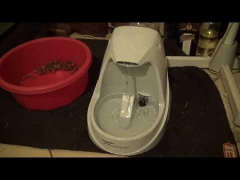 fontaine à eau pour chien drinkwell platinium