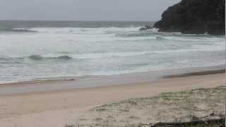 Pacific Palms Australia  city images : Boomerang Beach Pacific Palms NSW Australia footage only