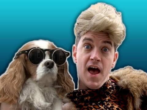 barelypolitical - Marklemore has a new pet project. Watch the Pet Collective's