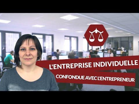 L'entreprise individuelle : confondue avec l'entrepreneur - Droit - digiSchool