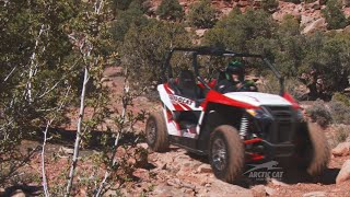 9. Arctic Cat Wildcat Trail Review