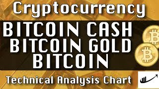 Jan-22 BITCOIN CASH : BITCOIN GOLD : BITCOIN Update CryptoCurrency Technical Analysis Chart