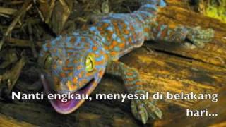 LAGU TEKEK - Mirae TEKEK EDITION Mp3