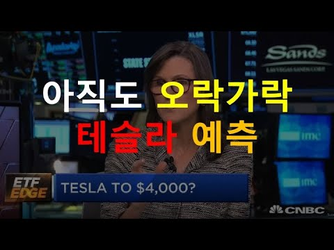 미친 ARK 전기차 예측, 믿기 힘든 스노우불의 사이버트럭 예측, 배터리 가격 예측, LG화학이 파나소닉보다 싸게?