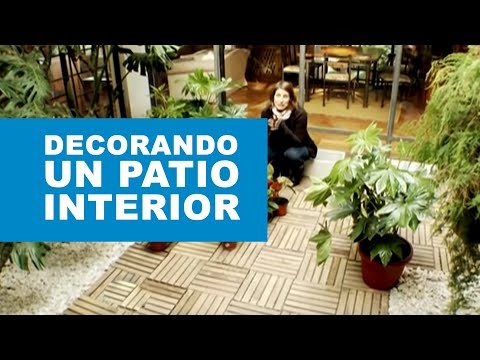 Plantas para patios for Decoracion de patios pequenos con plantas