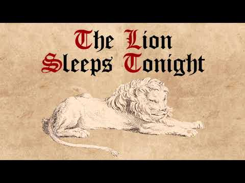 "The Tokens  ""The Lion Sleeps Tonight"" Cover by Middle Ages"