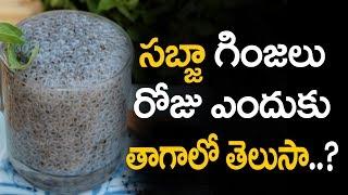 Sabja seeds health benefits and Sabja seeds benefits and Basil seeds benefits in telugu and Basil seeds