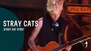 Stray Cat Strut Stray Cats