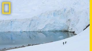 Video See the Extreme Ice Changes Near the Antarctic Peninsula | Short Film Showcase MP3, 3GP, MP4, WEBM, AVI, FLV Oktober 2018