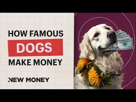 How Famous Dogs Make Money