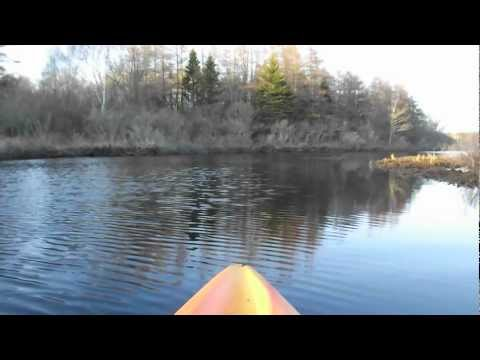 Flatwater Kayaking on Meteghan River, Nova Scotia - High Definition Video