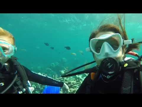 Bahamas scuba diving winterum w/ GPS_Búvárkodás. Heti legjobbak
