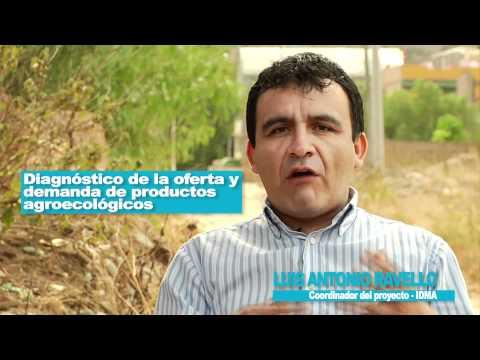 Experiencia de produccion orgánica de Huánuco