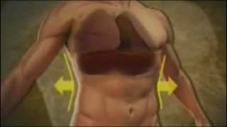 Técnicas em TCC: Respiração Diafragmática