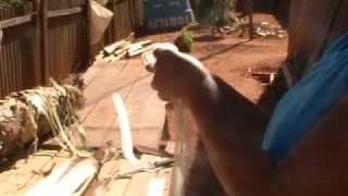 Extração Da Fibra Da Bananeira Para Artesanato.