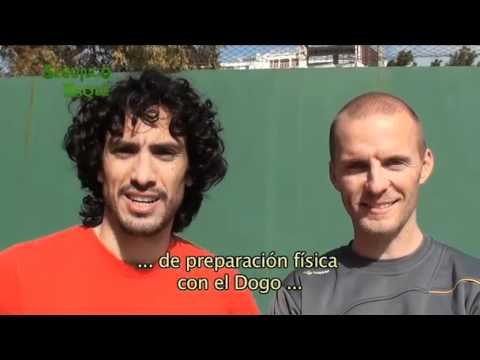 PROGRAMA N 38 PREPARACION FISICA CON EL DOGO