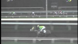 RACE 3 PUUMA 08/12/2013
