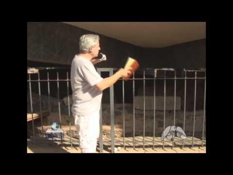 JUANRIBE PAGLIARIN - A CASA DE PEDRO