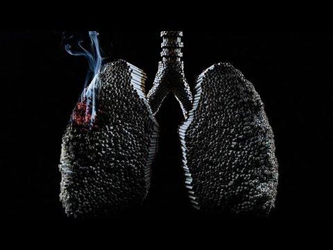 polmoni di un fumatore vs polmoni di un non fumatore - video shock