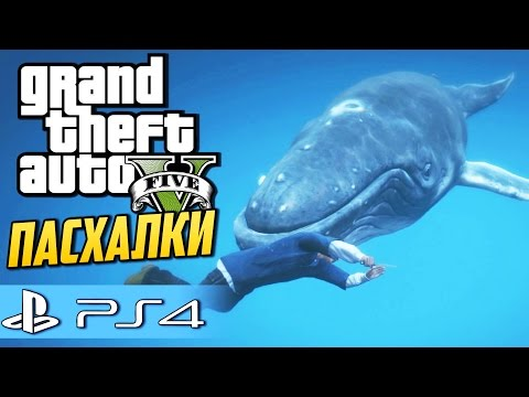 ловля кита во  гта 5