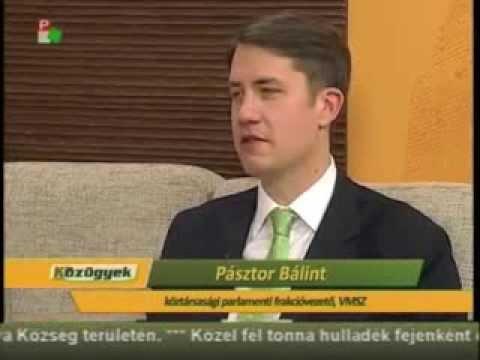 Közügyek - Pásztor Bálint-cover