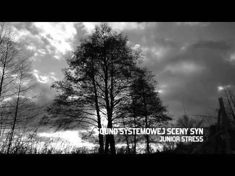 Tekst piosenki Junior Stress - Sound Systemowej Sceny Syn po polsku