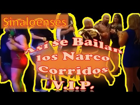 narco corridos the history behind the