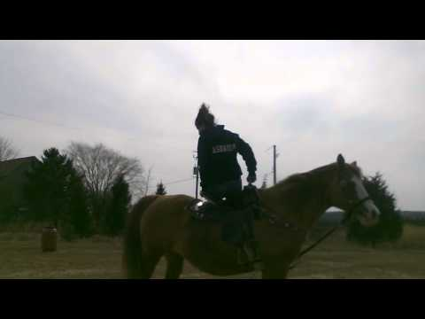 Horse trick riding FIRST TIME EVERR