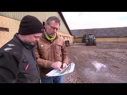 Bio-Revolution in Dänemark: Fonds übernimmt Pleitehöfe un ...