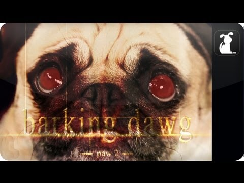 Watch: Breaking Dawn Part 2 / Barking Dawg Paw 2 Petody