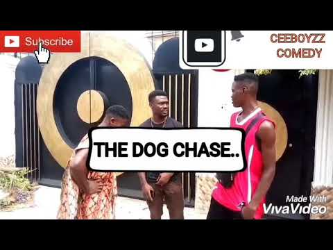 The DOG CHASE..(Ceeboyzz Comedy)