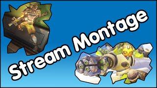 "Live Stream Montage 11 - ""A Potato Hamster!"""
