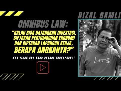 Ada Apa Omnibus Law, Ini Penjelasan Rizal Ramli