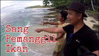 Video Uniknya Prosesi Pemanggilan ikan di Manokwari Timur, Papua Barat. (Papua vlog094) MP3, 3GP, MP4, WEBM, AVI, FLV April 2019