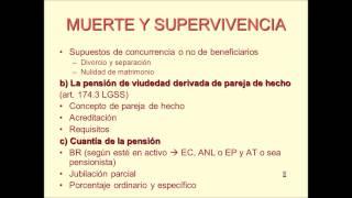 Umh1909 2012-13 Lec016 Prestaciones Por Muerte Y Supervivencia (2/4)