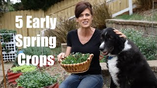 Planting Ideas for Early Spring