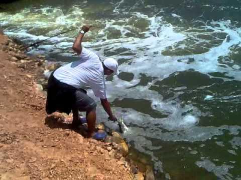 pesca de robalo em aracati