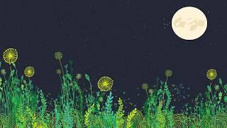 """Titre : """"Chabalaï"""" Album : [Fonetiq Flowers] - Disponible le 1er septembre (World Village) Pré-commandez l'album..."""