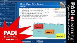 Diving Courses in Delphinus School